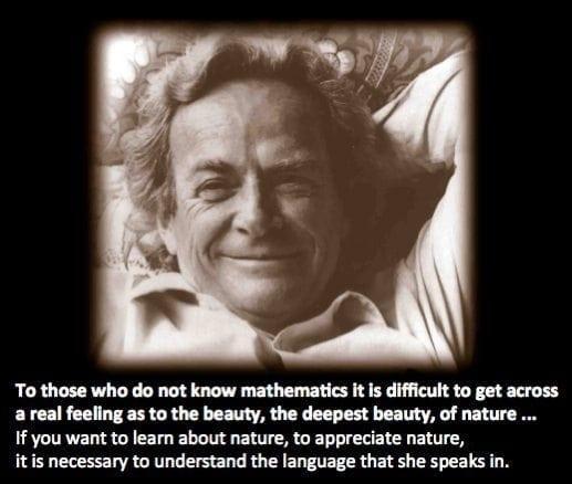 Feynman beauty