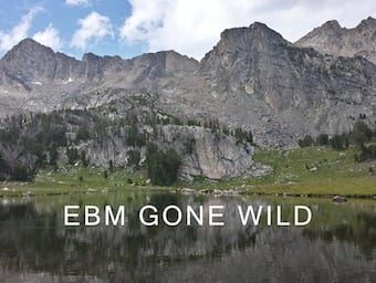 EBM Gone Wild mountain 340