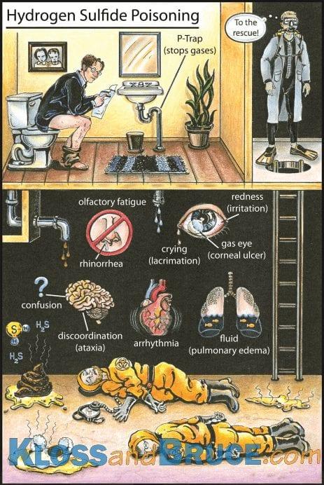 Hydrogen Sulfide Poisoning Tox Flashcard