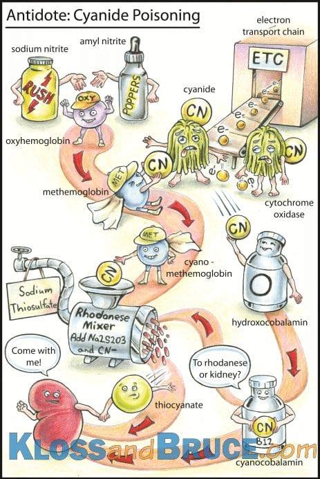 Cyanide Poisoning Antidotes