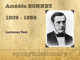 Amédée Bonnet (1809-1858) 340