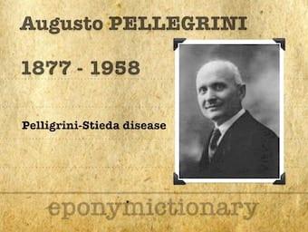 Augusto Pellegrini (1877 – 1958) 340