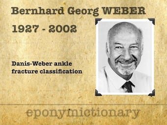 Bernhard Georg Weber (1927 – 2002) 340