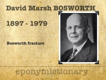 David Marsh Bosworth (1897–1979) 340