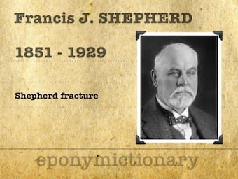 Francis John Shepherd (1851-1929) 340