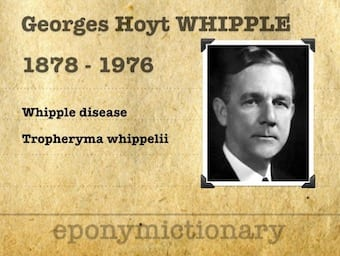 George Hoyt Whipple (1878-1976) 340