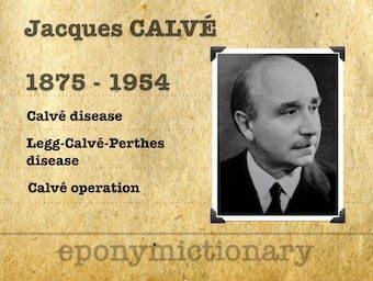 Jacques Calvé (1875–1954) 340