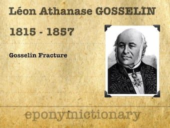 Léon Athanase Gosselin (1815–1887) 340