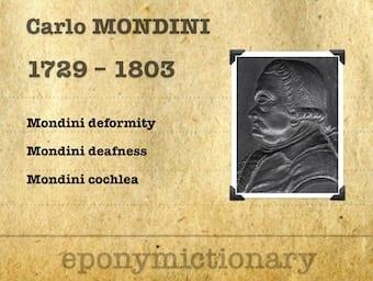 Carlo Mondini (1729-1803) 340