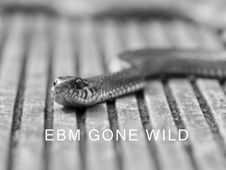 EBM Gone Wild snake 340