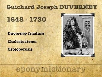 Joseph Guichard Duverney (1648-1730) 340