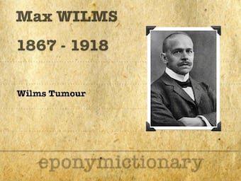 Karl Maximilian Wilhelm Wilms (1867 – 1918) 340
