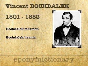 Vincent Alexander Bochdalek (1801–1883) 340
