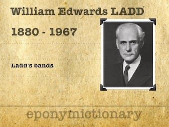 William Edwards Ladd (1880 – 1967) 340