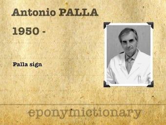 Antonio Palla (1950 - ) Italian radiologist. 340