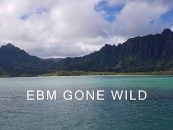 EBM Gone Wild sea 340