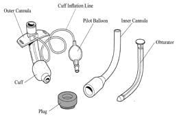 Fenestrated Tracheostomy Tube 2