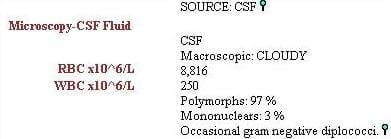 Microbial Mystery 001 CSF