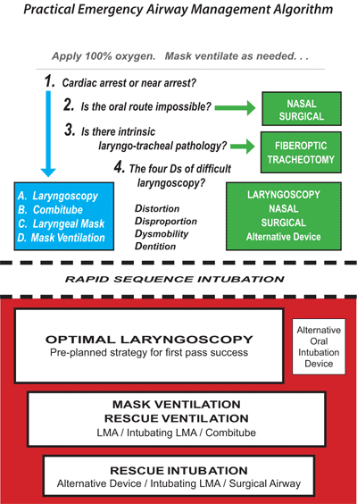 levitan-airway-algorithm