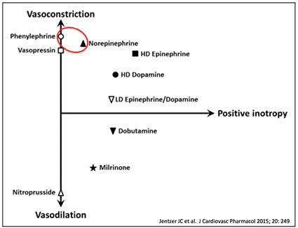 vasopressor-chart
