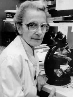 Lotte Strauss (1913–1985)