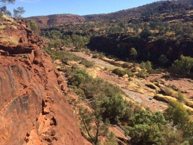 Palm Valley – where you can come see palm trees in Central Australia