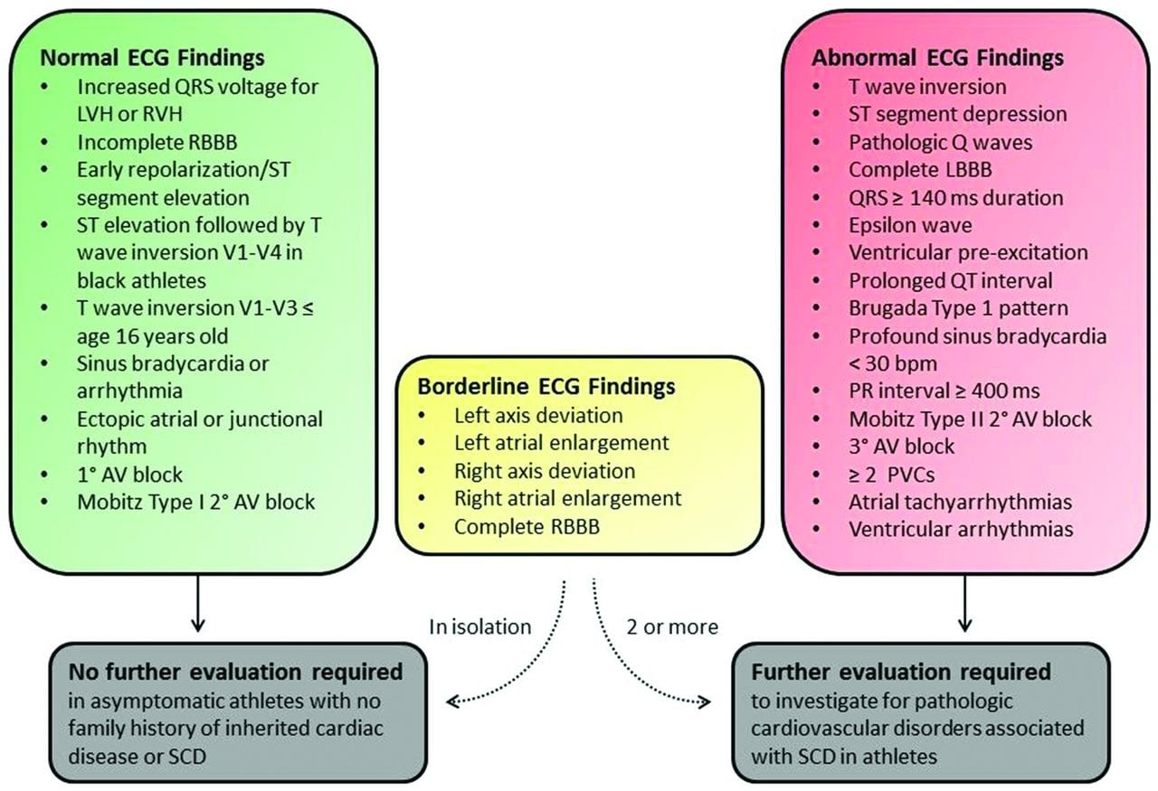 International criteria for electrocardiographic interpretation in athletes: