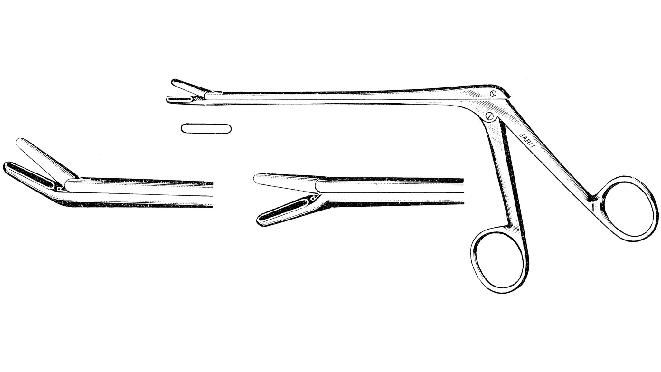 Cushing pituitary rongeurs
