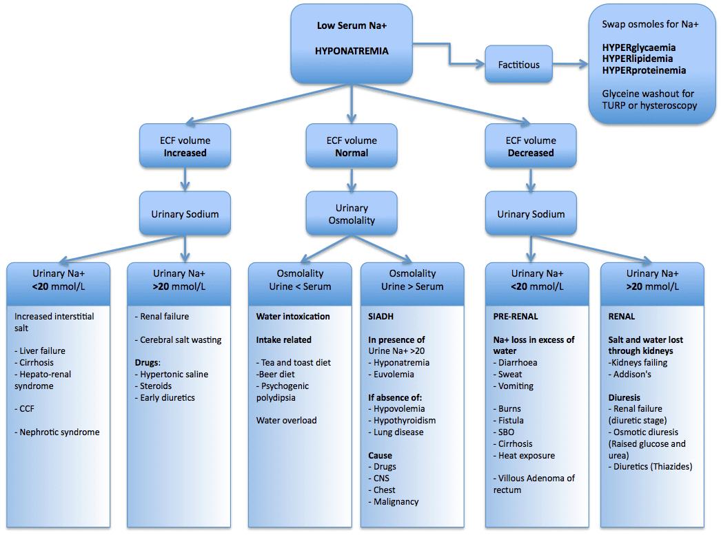 Diabetes Insipidus Ddx Litfl Ccc Electrolytes