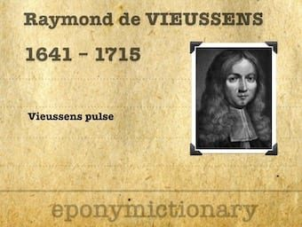 Raymond-de-Vieussens-1641-1715 340