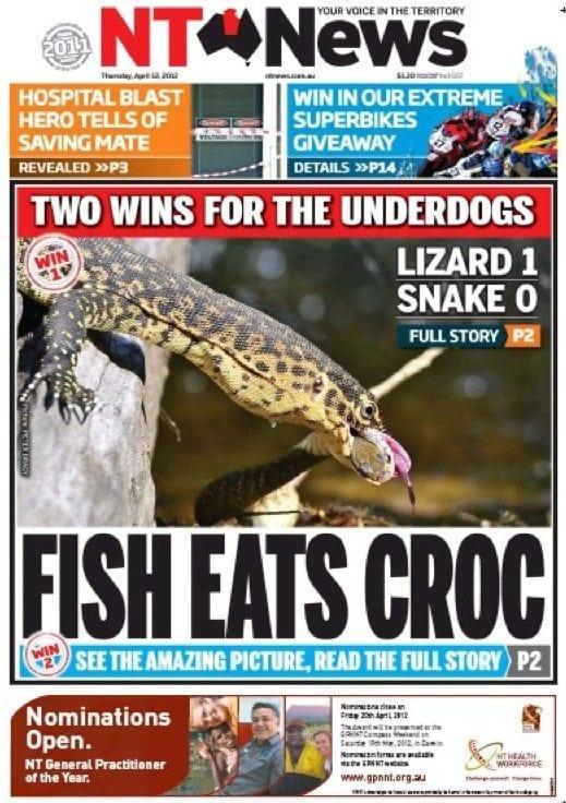 NT-News-fsih-eats-croc