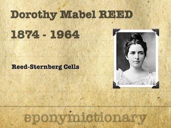 Dorothy Mabel Reed Mendenhall (1874 – 1964) 340