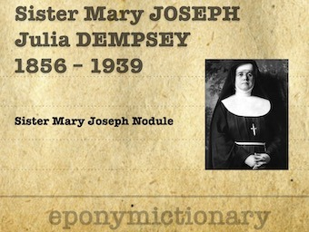 Julia Dempsey; Sister Mary Joseph (1856 - 1939) 340