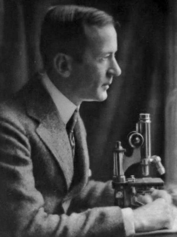 Louis Virgil Hamman (1877 - 1946)