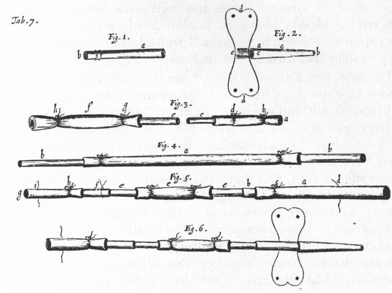 Lower. Tractatus de corde. 1669. Table 7