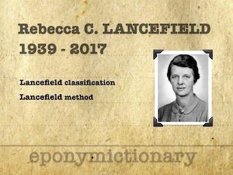 Rebecca Craighill Lancefield (1895 - 1981) 340