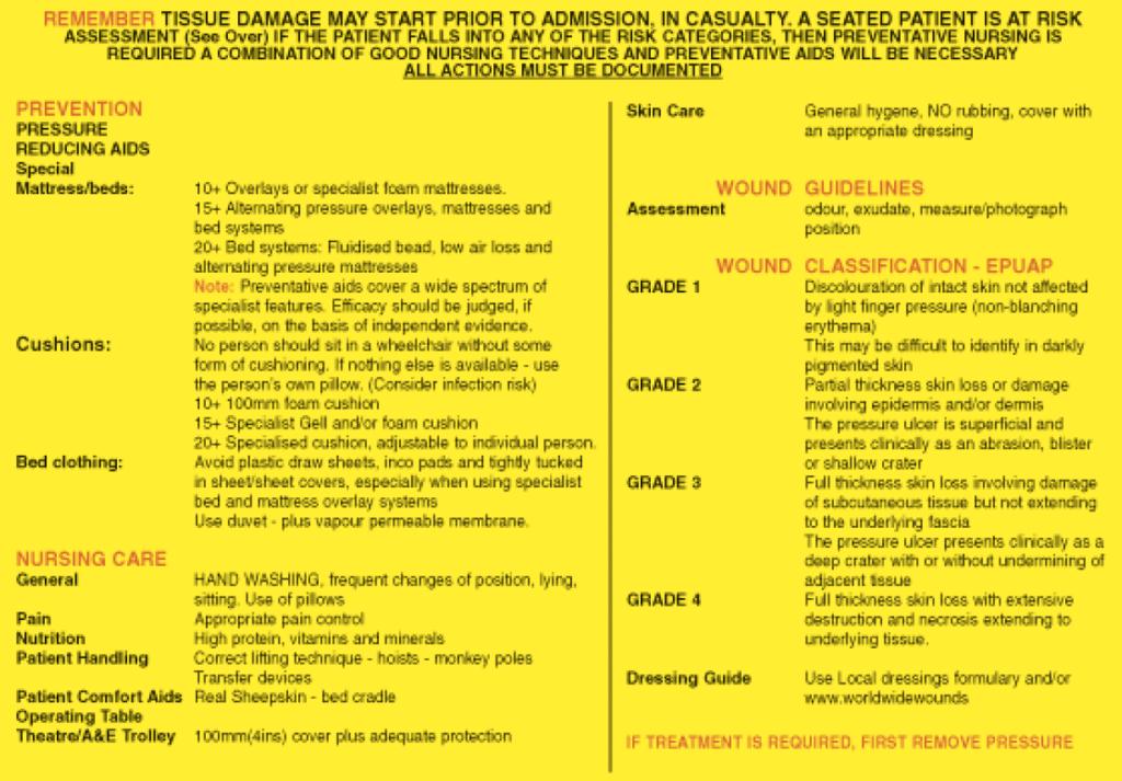 Waterlow Score Card-back 2005
