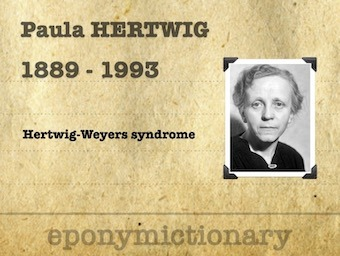 Paula Julie Elisabeth Hertwig (1889 - 1993) 340