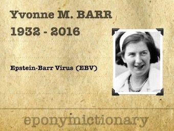 Yvonne Margaret Barr Balding (1932 – 2016) 340
