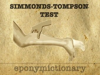 Simmonds-Thompson Test 340