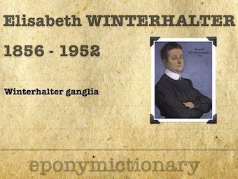 Elisabeth Hermine Winterhalter (1856 – 1952) 340