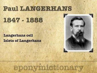 Paul Wilhelm Heinrich Langerhans (1847 - 1888) 340