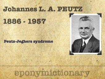 Johannes Laurentius Augustinus Peutz (1886 - 1957) 340