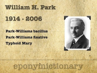 William Hallock Park (1863–1939) 340 2