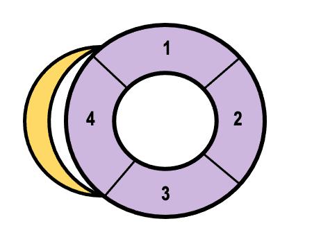 PSAX-Diagram
