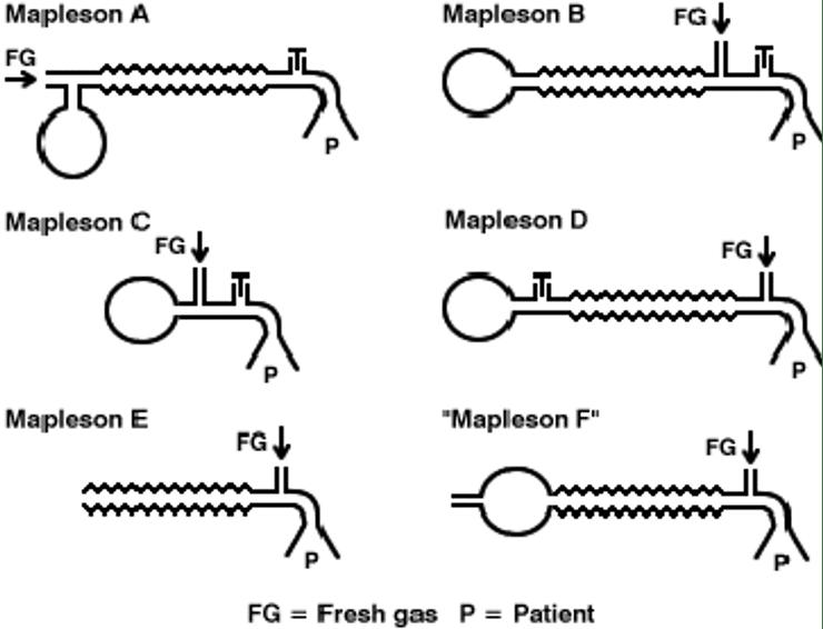 Mapleson Circuit Litfl Medical