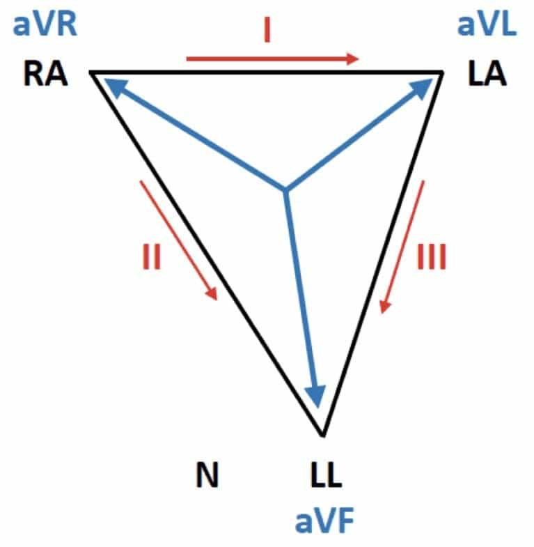 Einthoven triangle Normal